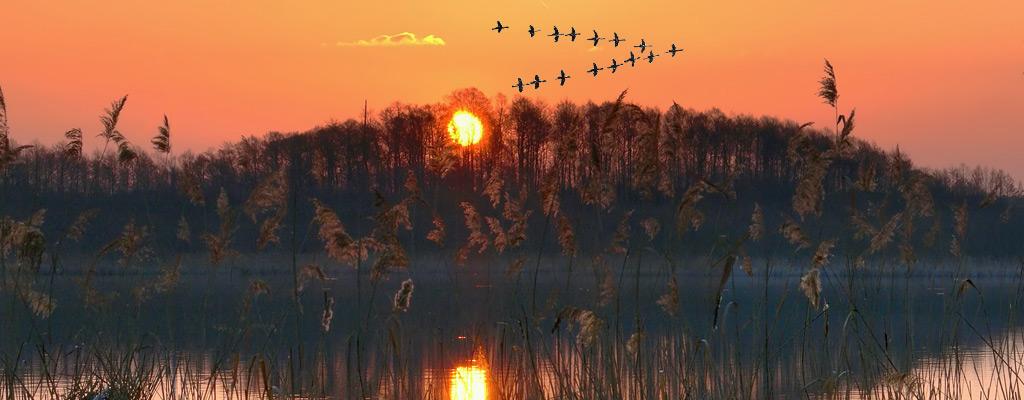 Охота в Астрахани по лучшим ценам, доступным всем!