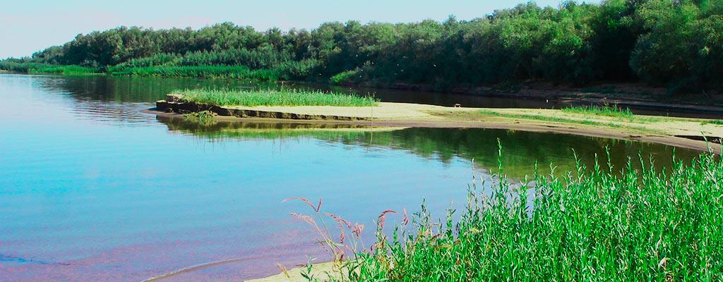 База отдыха Пеней в Астрахани предлагает охоту, рыбалку и просто отличный отдых