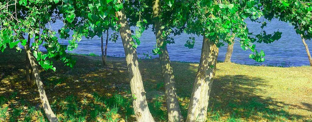 База отдыха Якорь в Астрахани приглашает Вас на незабываемый отдых