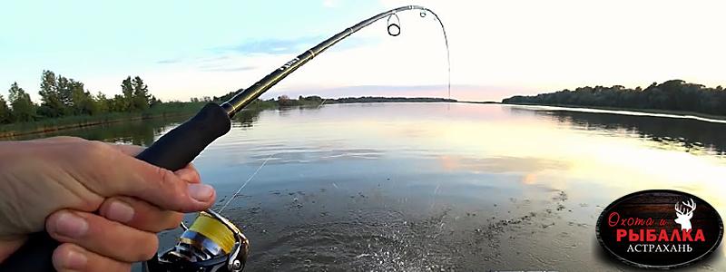 Куда поехать на рыбалку в Астрахани