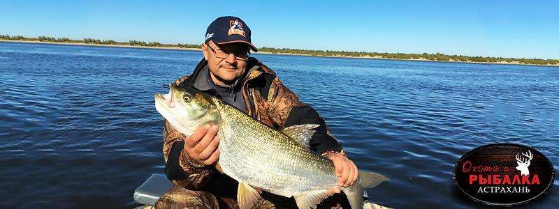 Рыбалка на Волге в Астрахани